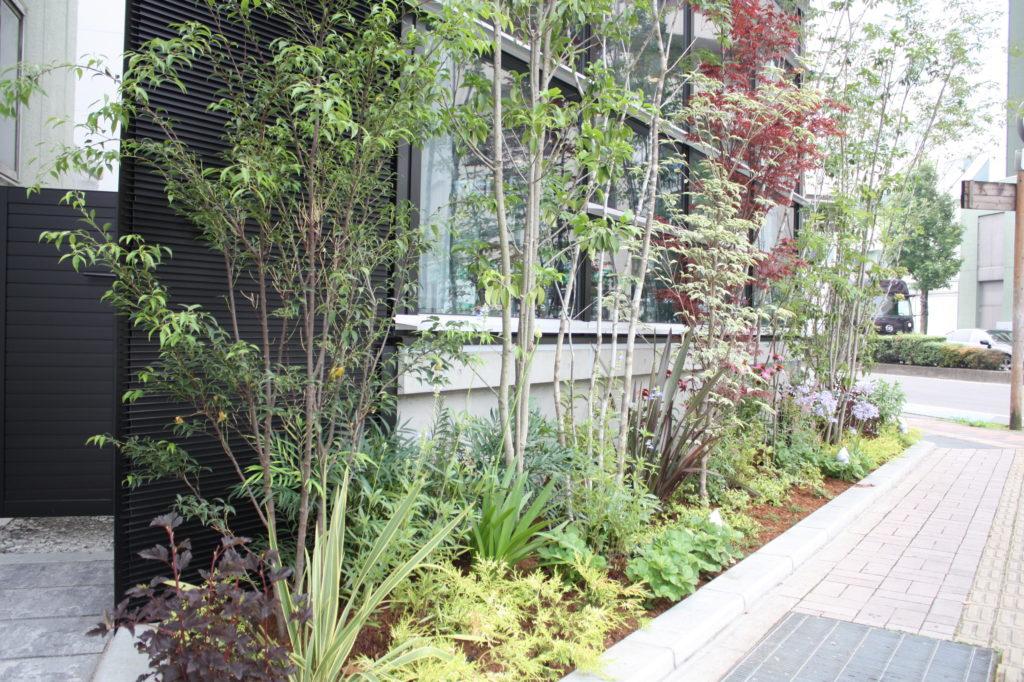 都会にある雑木の庭
