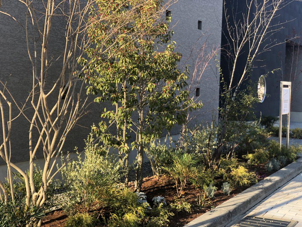 四季を感じられる住宅のファサード植栽
